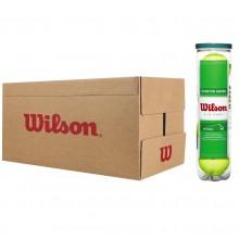 Carton 18 Tubes De 4 Balles Wilson Starter Play