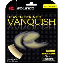CORDAGE SOLINCO VANQUISH (12 METRES)