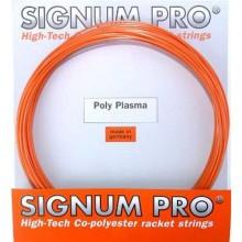 Cordage Signum Pro Polyplasma